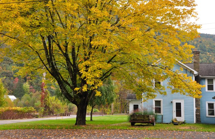 Fall in Slate Run, PA-photographed by Tina D. Stephens
