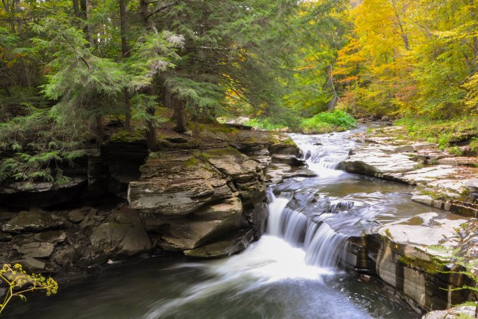 A stream near Wellsboro, PA-photographed by Tina D. Stephens
