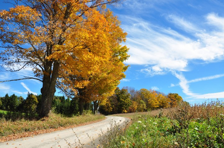 Fall scenery near Wellsboro PA-photographed by Tina D. Stephens