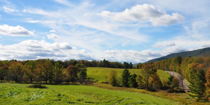 Farmland near Ricketts Glen State Park